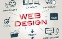 Benefits of Working with a Professional Web Designing Company